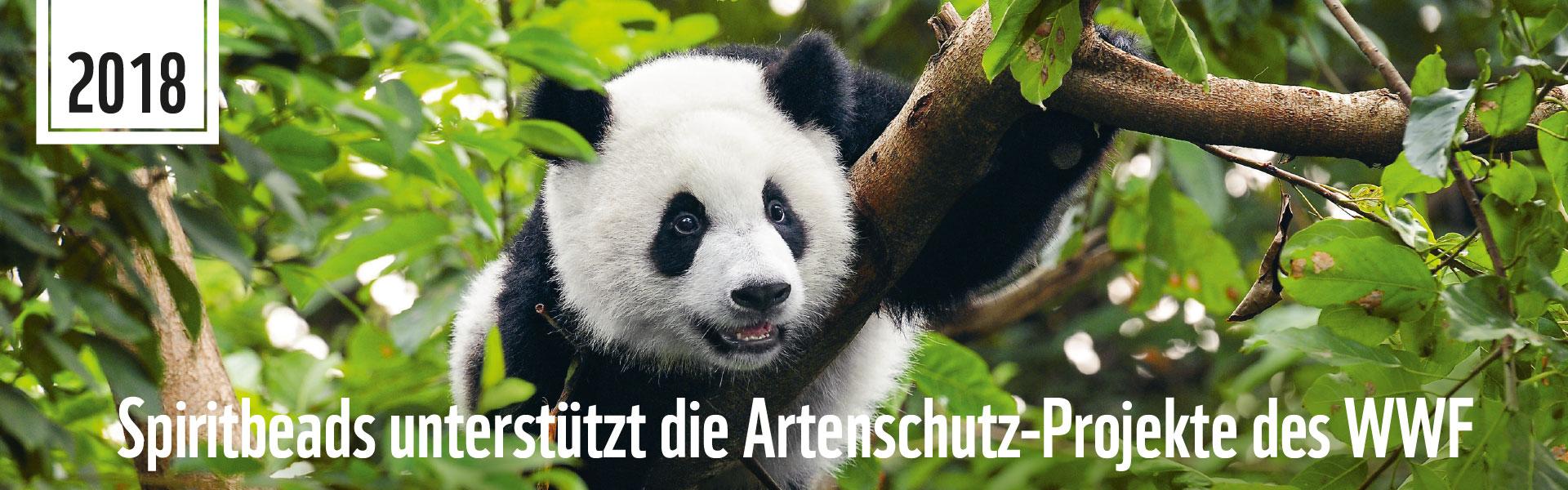 WWF-Banner_Spiritbeads